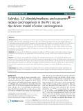 Sulindac, 3,3'-diindolylmethane and curcumin reduce carcinogenesis in the Pirc rat, an Apc-driven model of colon carcinogenesis