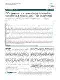 PKCα promotes the mesenchymal to amoeboid transition and increases cancer cell invasiveness