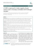 L1CAM is expressed in triple-negative breast cancers and is inversely correlated with Androgen receptor