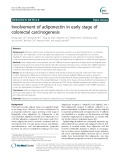 Involvement of adiponectin in early stage of colorectal carcinogenesis