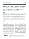 Diagnosis and staging of superficial esophageal precursor based on pre-endoscopic resection system comparable to endoscopic resection