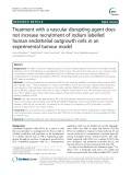 Treatment with a vascular disrupting agent does not increase recruitment of indium labelled human endothelial outgrowth cells in an experimental tumour model