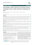 Extracellular matrix signatures of human primary metastatic colon cancers and their metastases to liver