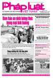 Báo Pháp luật Việt Nam - Số 79 năm 2020