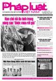 Báo Pháp luật Việt Nam – Số 53 năm 2020
