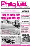 Báo Pháp luật Việt Nam - Số 111 năm 2020