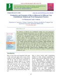 Productivity and economics of rice as influenced by different crop establishment methods and weed management practices