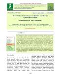 Molecular level stress response in Rhizobia-identification of heat shock proteins