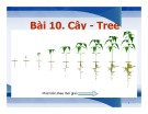 Bài giảng Cấu trúc dữ liệu và giải thuật trong C++ - Bài 10: Cây (Tree)
