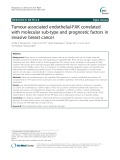 Tumour-associated endothelial-FAK correlated with molecular sub-type and prognostic factors in invasive breast cancer