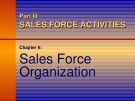 Lecture Dalrymple's sales management: Concepts and cases – Chapter 6: Sales force organization