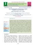 Microbiological quality of Hoplobatrachus occipitalis (Amphibia, Anura) used as meat