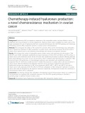Chemotherapy-induced hyaluronan production: A novel chemoresistance mechanism in ovarian cancer
