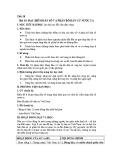 Giáo án Địa lí 12 - Bài 16: Đặc điểm dân số và phân bố dân cư nước ta