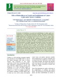 Effect of biofertilizers on growth and establishment of cashew grafts under nursery condition