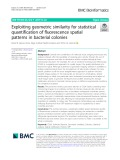 Exploiting geometric similarity for statistical quantification of fluorescence spatial patterns in bacterial colonies