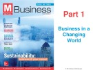 Lecture Business (4/e): Chapter 2 - Ferrell, Hirt, Ferrell