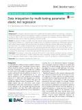 Data integration by multi-tuning parameter elastic net regression