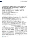 Ảnh hưởng của hàm lượng chất rắn hòa tan và nhiệt độ sấy đối lưu lên tính chất vật lí và hàm lượng dinh dưỡng của Mãng cầu xiêm sấy dẻo (Annona muricata L.)