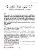 Ảnh hưởng của việc loại bỏ zona pellucida đến hiệu quả tạo phôi lợn ỉ nhân bản