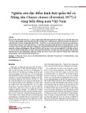 Nghiên cứu đặc điểm hình thái quần thể cá Măng sữa Chanos chanos (Forsskal, 1977) ở vùng biển đông nam Việt Nam