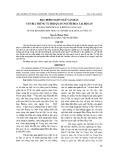 Đặc điểm ngôn ngữ văn bản văn bia trùng tu hội quán người Hoa tại Hội An