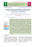 Response of integrated nutrient management on growth and yield of pearlmillet [Pennisetum glaucum (L.) R. Br. emend. Stuntz.]-wheat (Triticum aestivum L.) cropping system