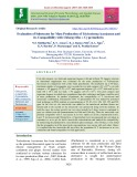 Evaluation of substrates for mass production of Trichoderma harzianum and its compatibility with chlorpyrifos + cypermethrin