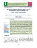 Phytochemical analysis and antimalarial activity of Usnea sp. from South Sulawesi against Plasmodium falciparum