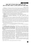 Hình thức tổ chức hành nghề luật sư ở Việt Nam thực trạng và một số đề xuất, kiến nghị