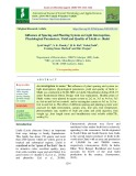 Influence of spacing and planting system on light interception, physiological parameters, yield and quality of Litchi cv. Shahi