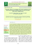 Comparative effects of crop residue and nutrient combination on soil total nitrogen dynamics at different stages of crop growth under maize-wheat cropping system