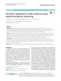 Dynamic epigenetic mode analysis using spatial temporal clustering