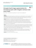 Unsupervised image segmentation for microarray spots with irregular contours and inner holes