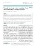 Three-dimensional protein model similarity analysis based on salient shape index
