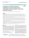 Comparison of module detection algorithms in protein networks and investigation of the biological meaning of predicted modules