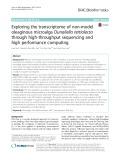 Exploring the transcriptome of non-model oleaginous microalga Dunaliella tertiolecta through high-throughput sequencing and high performance computing