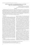 Đánh giá tác dụng của chế phẩm sinh học CAFE-HTD01 trên cây cà phê ghép tại Tây Nguyên