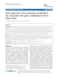Gene expression and nucleotide composition are associated with genic methylation level in Oryza sativa
