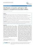 Identification of putative pathogenic SNPs implied in schizophrenia-associated miRNAs