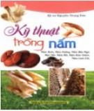 Cẩm nang hướng dẫn kỹ thuật trồng nấm: Phần 2