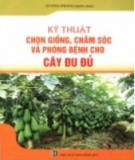 Hướng dẫn chọn giống, chăm sóc và phòng bệnh cho cây đu đủ: Phần 2