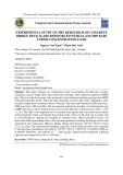 Nghiên cứu thực nghiệm xác định ứng xử chịu tải trọng tập trung của bản mặt cầu bằng bê tông cốt thanh Polimer sợi thủy tinh