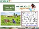 Một số hình ảnh về hoạt động chăn nuôi, thú y Việt Nam