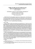 Nghiên cứu khả năng xử lý kim loại nặng trong đất nhiễm bẩn bằng cây cỏ cú (Cyperus rotundus L.)