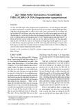 Quy trình phân tích đoạn Cytochrome B trên các mẫu cá tra (Pangasianodon hypophthalmus)