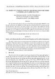 Các nghiên cứu về mối quan hệ giữa thái độ hoài nghi nghề nghiệp và tính độc lập của kiểm toán viên