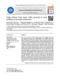 Nghiên cứu sử dụng than sinh học tổng hợp từ bã cà phê để xử lý ô nhiễm trong nước thải chăn nuôi
