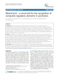 MatrixCatch - a novel tool for the recognition of composite regulatory elements in promoters