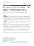 The pattern of congenital heart defects arising from reduced Tbx5 expression is altered in a Down syndrome mouse model